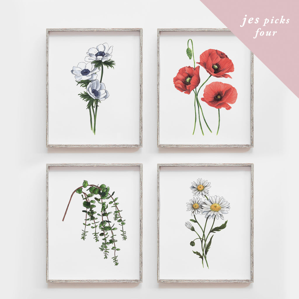 Hand-picked by Jes - Set of Four Art Prints (Mystery)
