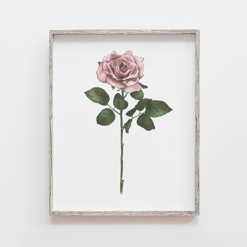 mauve rose art print by JesMarried