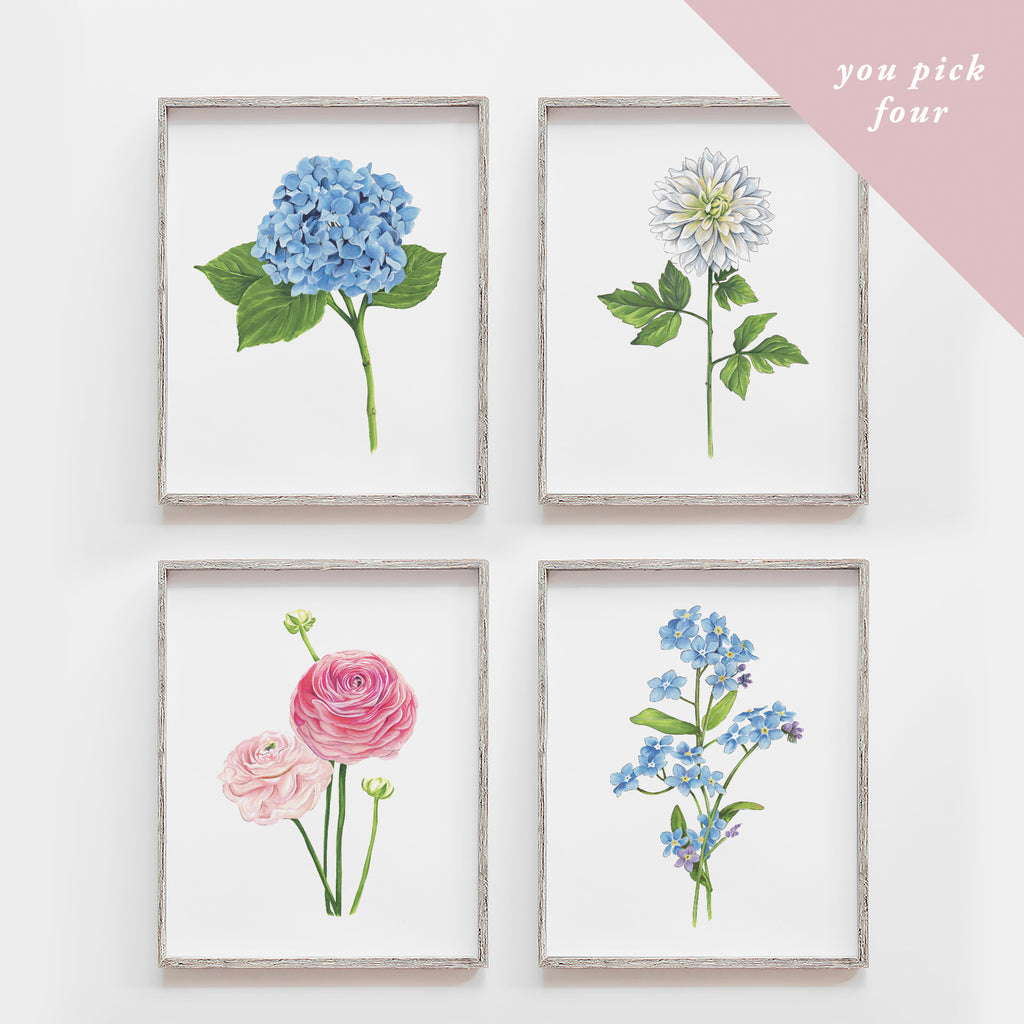 You Pick Four Flowers Art Print Set