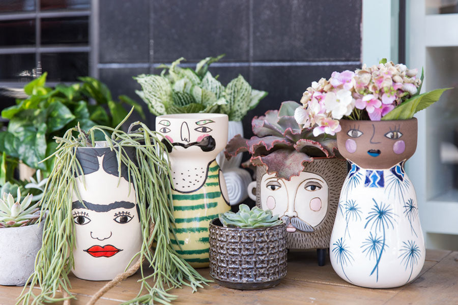 image of painted plant pots with faces and succulents growing