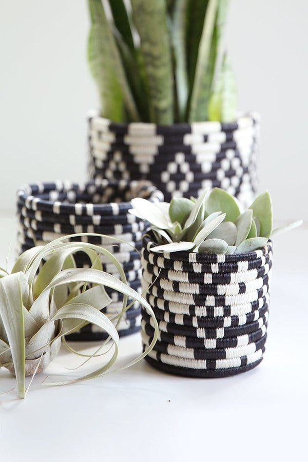 Ndora Basket Planters (Set of 3)