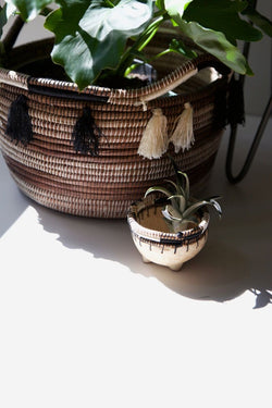 Eclipse Mini Basket