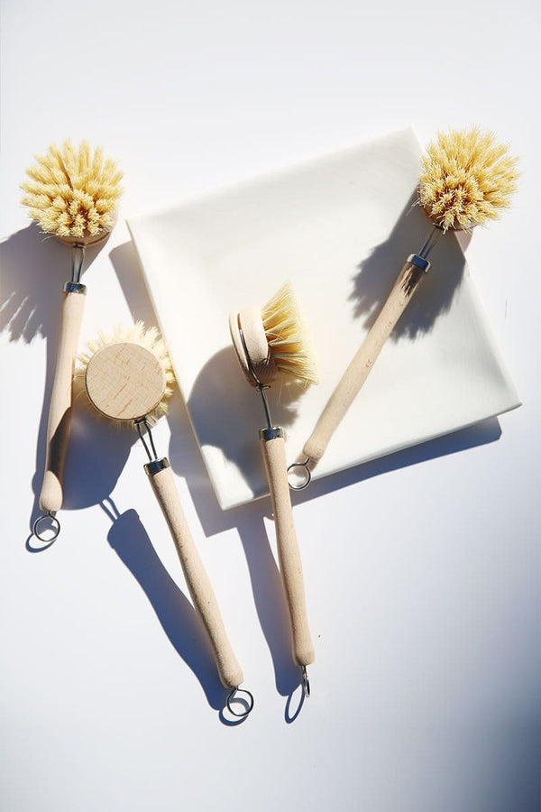 White Teakwood & Agave Fiber Dish Brush