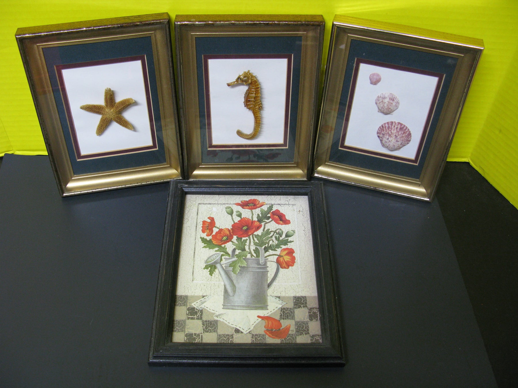 4 Picture Frames: Seahorse, Seashells, Starfish, and Flowers