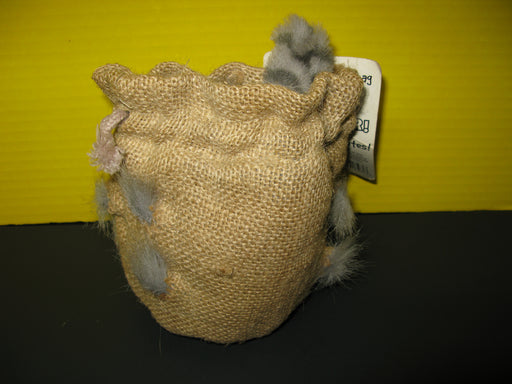 Cat in the Bag Toy