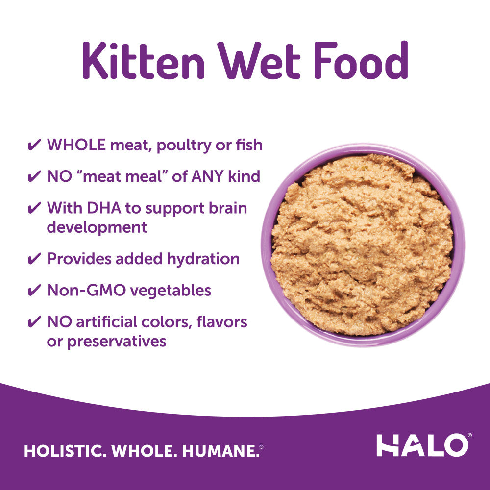 Halo Kitten Grain Free Chicken Recipe Pate Canned Cat Food