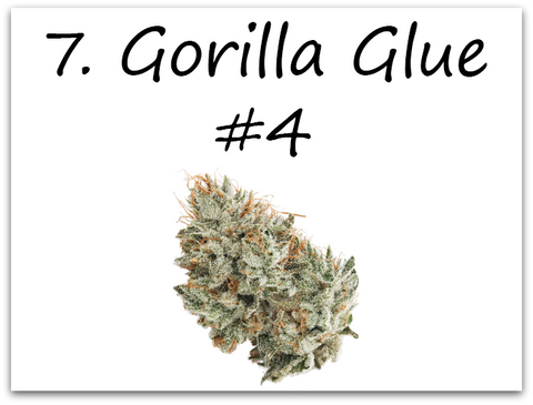 Gorilla Gliue #4 takes its' place at number 7.