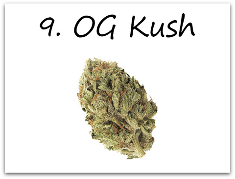 OG Kush makes number 9 and is an old time favorite among almost all 420 connoisseurs