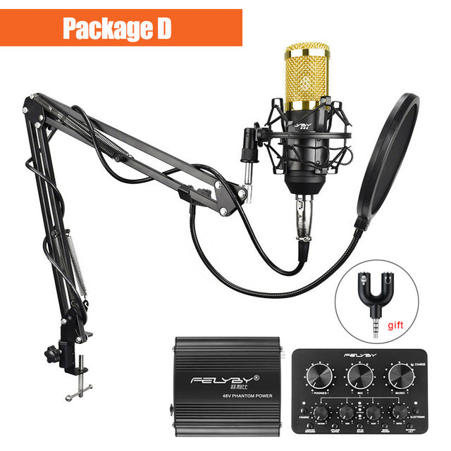 Streameo B800 Professional Condenser Microphone Set