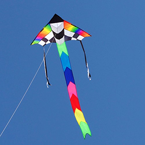 Into The Wind Champion Delta Kite
