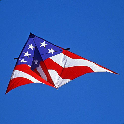 8 1/2-Ft. Patriotic Delta Single Line Kite