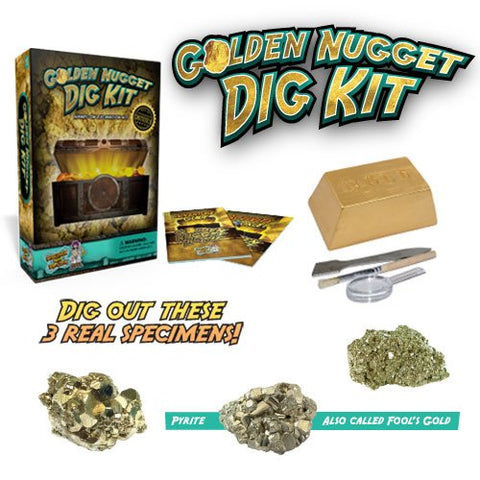 Dig For Gold Science Kit  Dig Up Real Pyrite Nuggets (Fools Gold)
