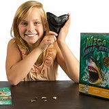 Mega Shark Teeth Fossil Science Kit  Includes 5 Genuine Fossilized Shark Teeth And A Large Replica Megalodon Tooth