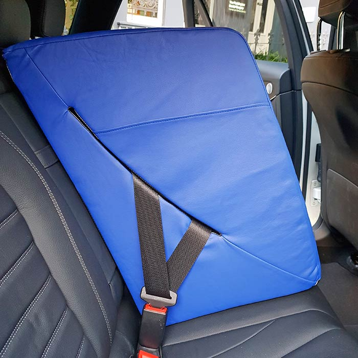 backseat carma car seat divider