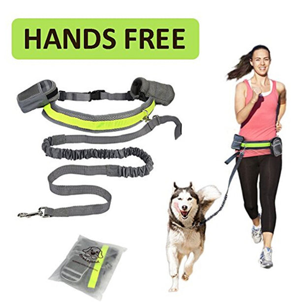 Hands Free Pet Dog Leash w/ Padded Waist Belt & Reflective Strip