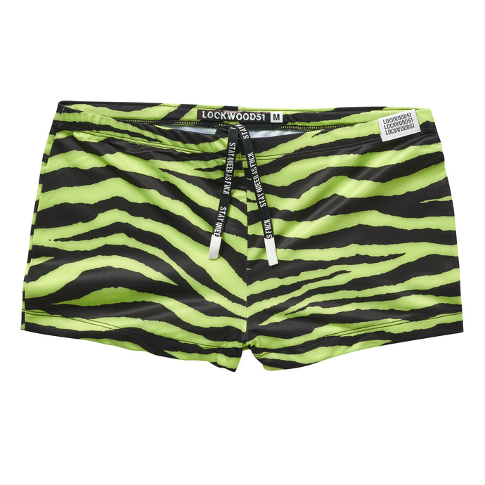 Zebra Square Cut • Frosted Lime