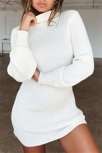 Sexy womens turtleneck sweater