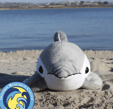 Finn the Dolphin - Make Me Yours Toy Studio