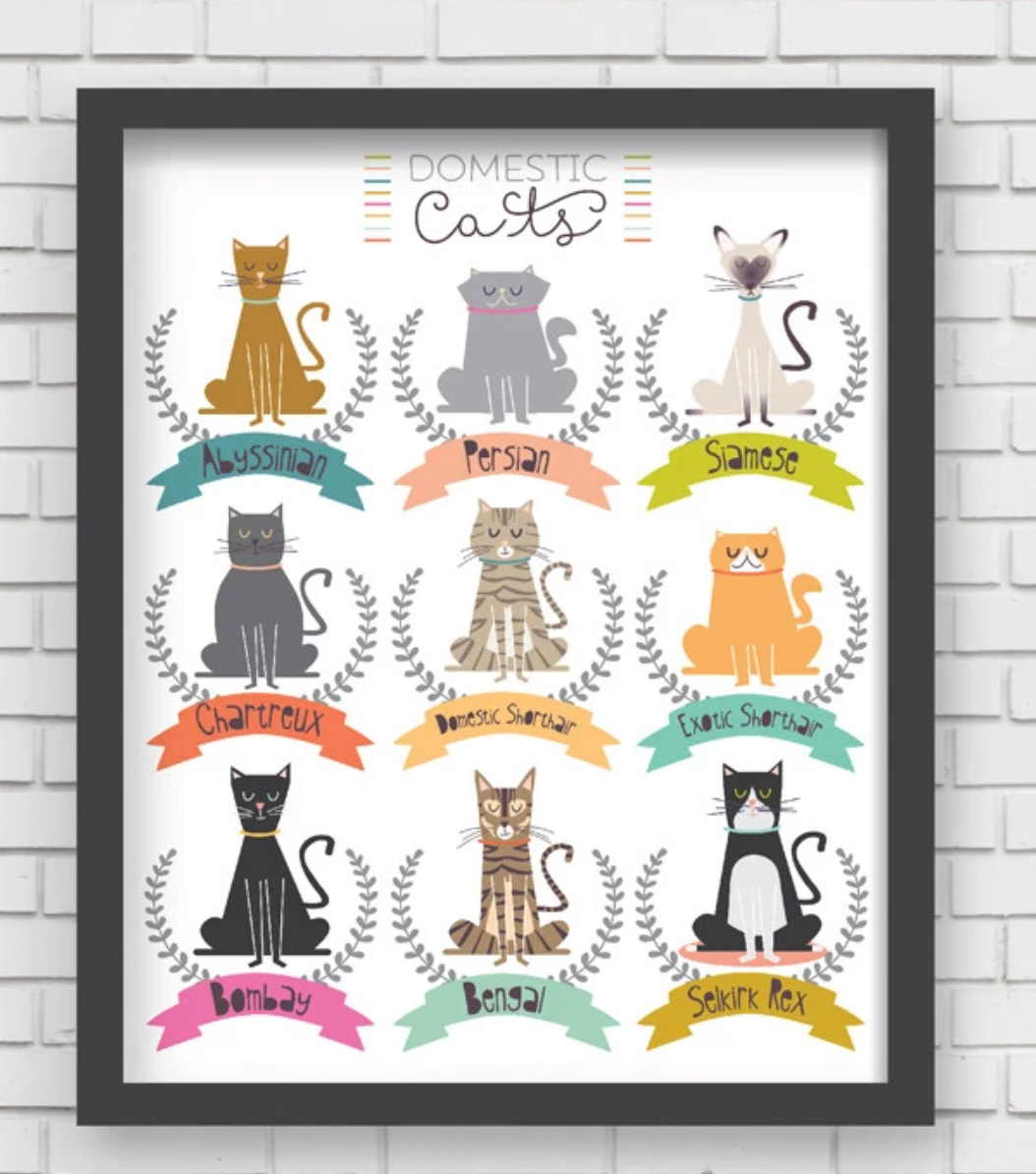 I Love Cats! Art Print