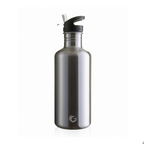 stainless steel water bottle as an option for things to ask for Christmas during christmas