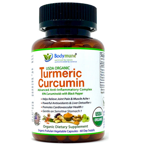 USDA Organic Turmeric Curcumin Supplement Turmeric Capsules for Sensitive Stomach | Best Organic Turmeric Supplement with Black Pepper Sea buckthorn Oil Ginger and Amla - 60 Day Supply