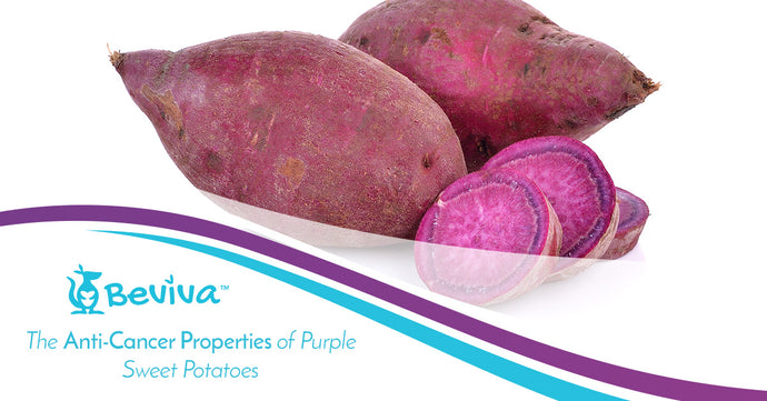 The Anti-Cancer Properties of Purple Sweet Potatoes