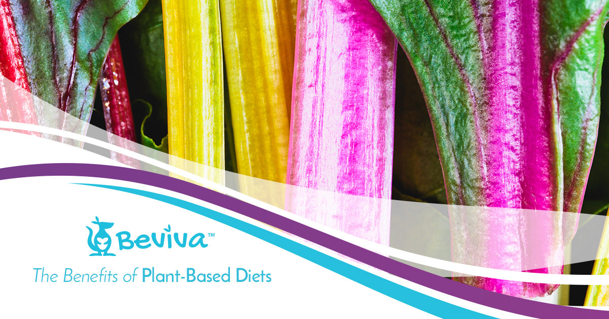 The Benefits of Plant-Based Diets