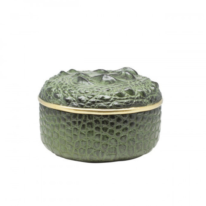 Box round crocodile polyresin