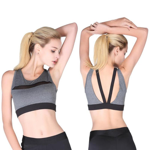 Hollow Back Sports Bra/Wide Band Bra