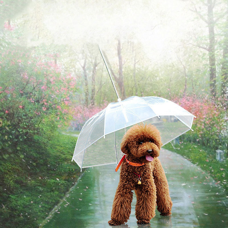 Transparent Pet Umbrella-  Small Dog Umbrella Rain Gear with Dog Leads - Niche Savings