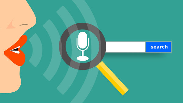 Voice search enabled smartphone