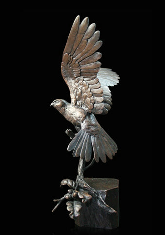 Richard Cooper Bronze - 'Kestrel'