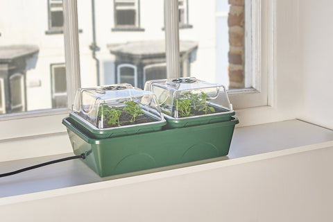 heated 2 bay propagator with capillary mat an tray is a self watering and heated propagator for the early cultivation, germination and growth of seeds, cuttings and plants
