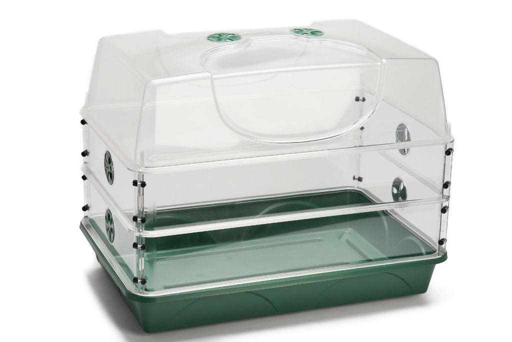 Original Large Propagator with Two Height Extender Sets