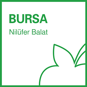 b-fit Bursa Nilüfer Balat - 16013