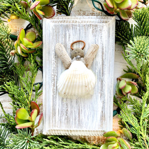 Sea Shell Angels on a Wood Frame