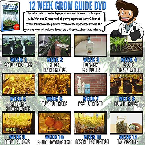 Yield Lab Horticulture 1000w HPS Grow Light System