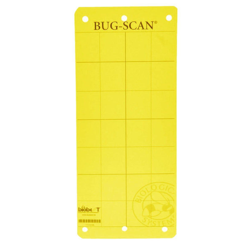 Sticky Trap Bug-Scan Yellow for Aphid / Whitefly - GrowDudes