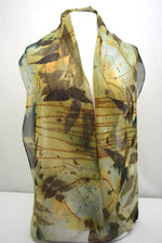 Gray Black Walnut Eco Printed Silk Chiffon Scarf