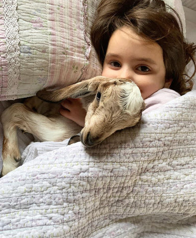 Daisy with baby goat