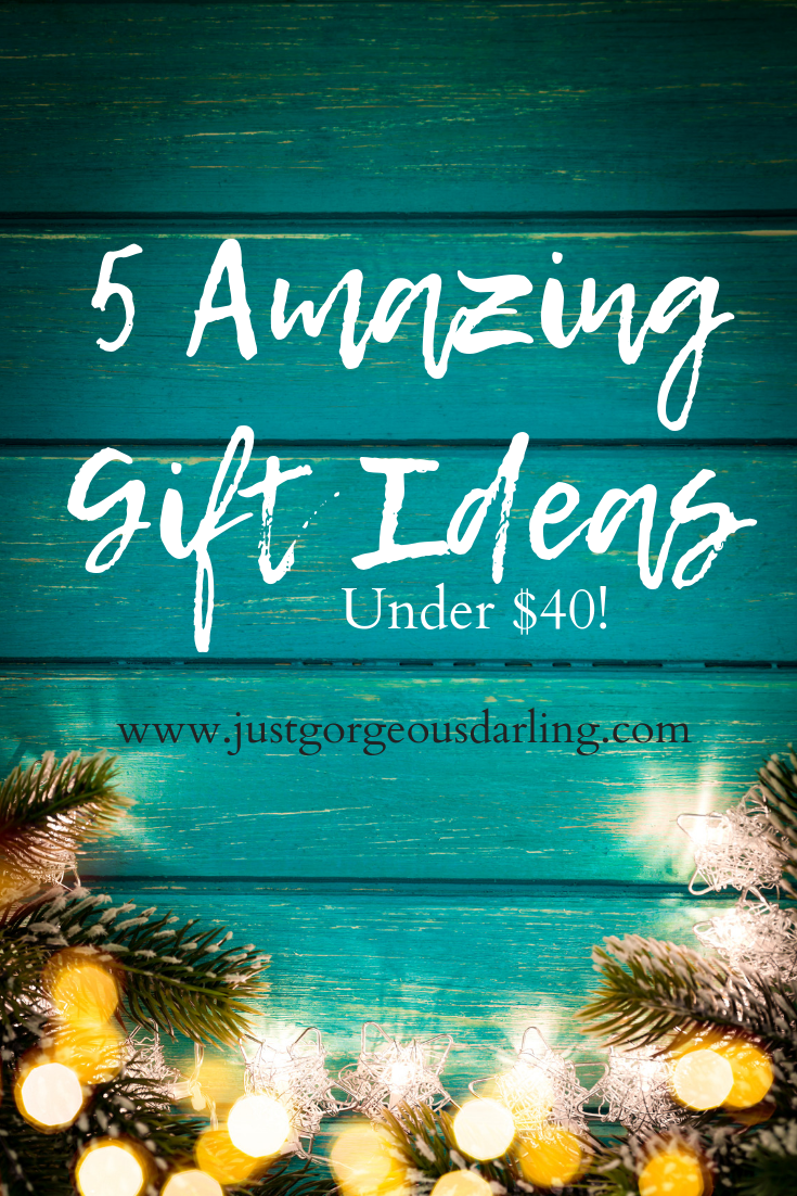 5 Great Gift Ideas all Under $40!