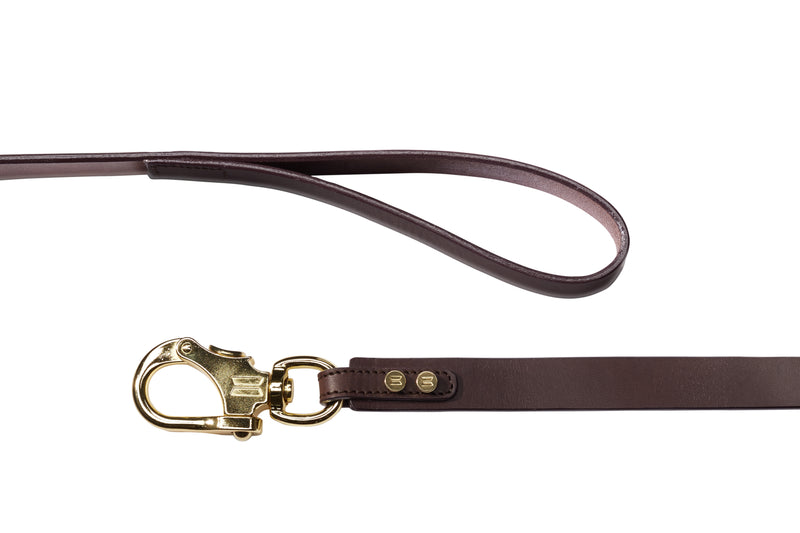 Nautical Leather Dog Leash