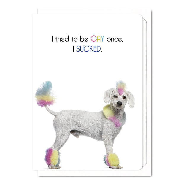 I Tried To Be Gay Once, I Sucked - Gay Greetings Card