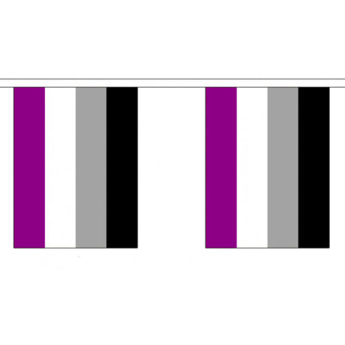 Asexual Pride Flag Bunting Small (3m x 10 flags)