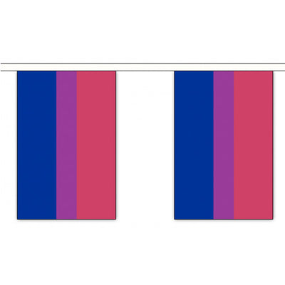 Bisexual Pride Rainbow Flag Bunting Large (9m x 30 Large Flags)