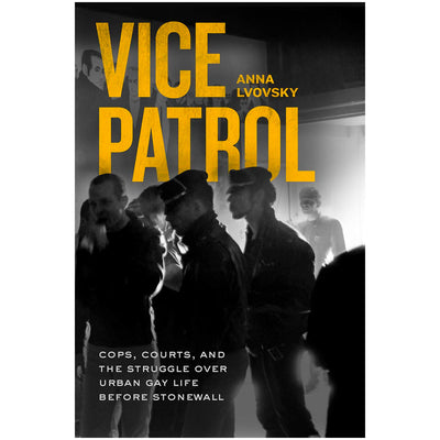 Vice Patrol - Cops, Courts and the Struggle Over Urban Gay Life Before Stonewall Book