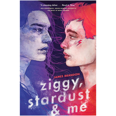 Ziggy, Stardust and Me Book