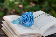 Paper rose on an open book