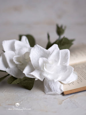 Two gardenia flowers with a book