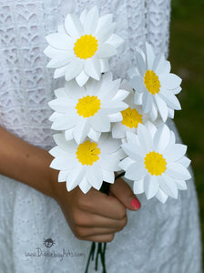 White Paper Daisies by the Dozen and Half Dozen